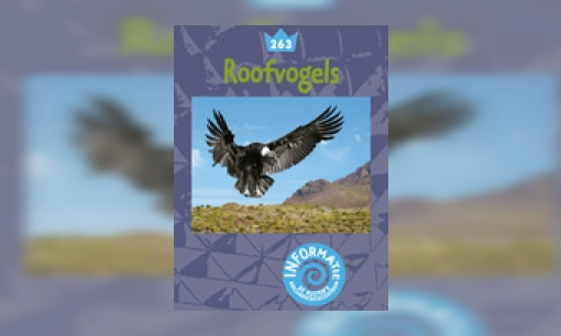 Plaatje Roofvogels