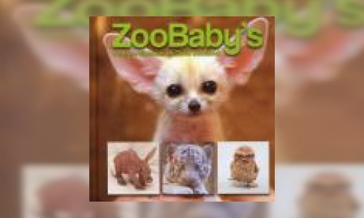 Plaatje ZooBaby